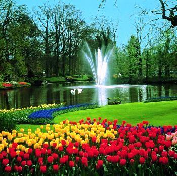 Jardines keukenhof holanda buscar con google lugares - Jardines de holanda ...