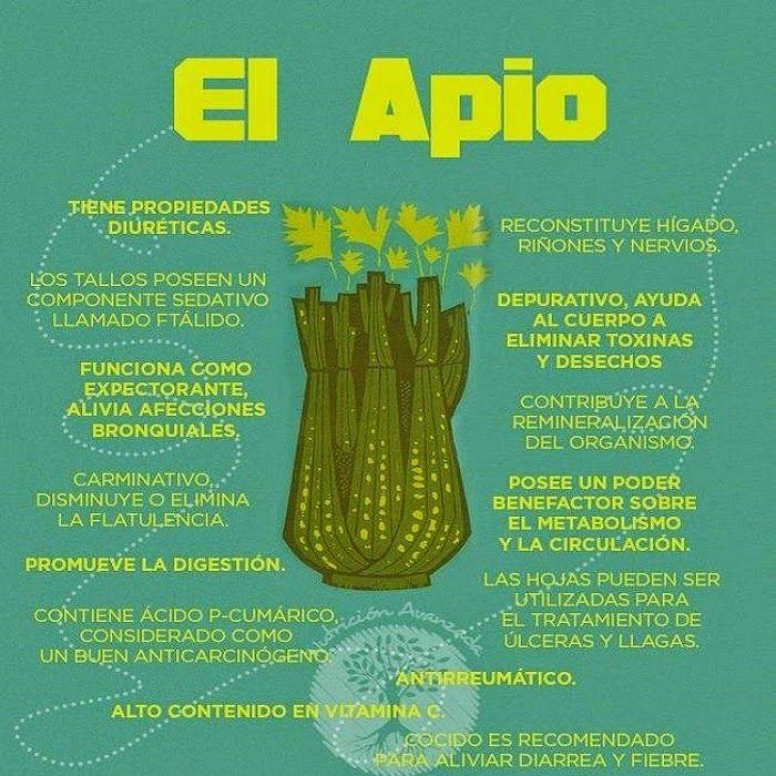 Propiedades del apio :  El apio es una planta que se utiliza como alimento pero también tiene propiedades medicinales que lo hacen especial....