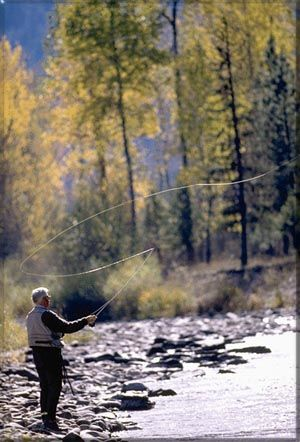 134 best images about fishing on pinterest canada for Fishing in new mexico
