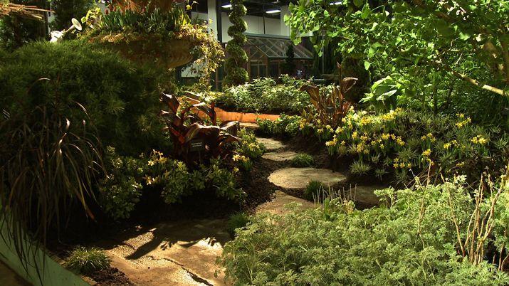 """Ландшафтный дизайн: тренд на """"дикий"""" сад"""
