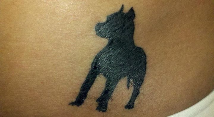 My pitbull tattoo