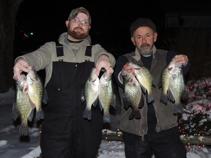 85 best images about crappie on pinterest for Indiana crappie fishing