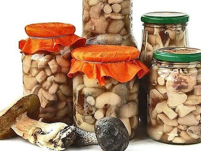 11 заготовок грибов на зиму - Вкуснотища необыкновенная!