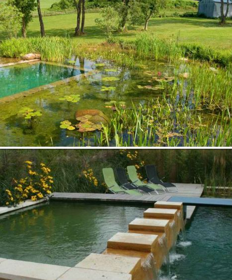 147 Best Images About Natural And Unique Swimming Pools