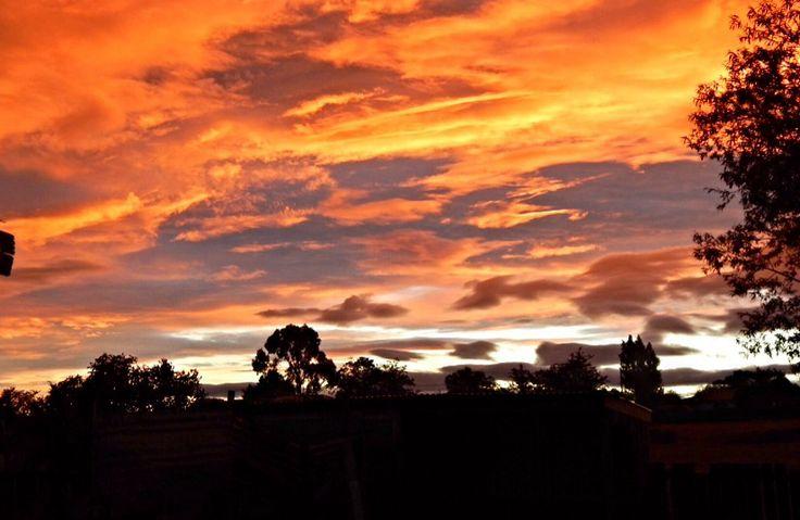Sunset at Oatlands
