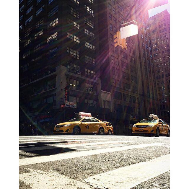 #newyork #frog