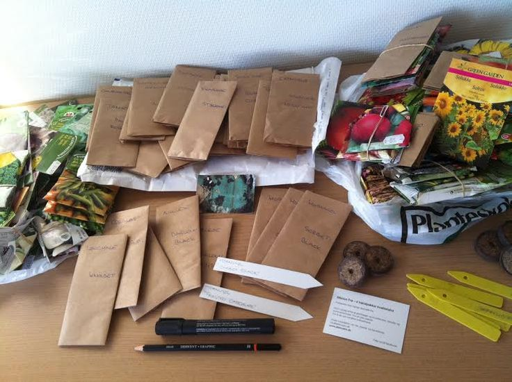 Crazy about seeds…