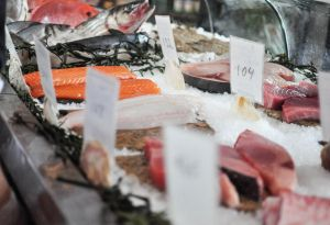Greenwashing and Fish: Why Labeling Matters