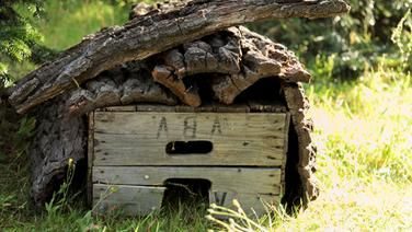 Ein selbst gebautes Igelhaus