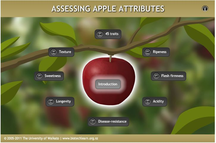 An interactive showing a range of apple attributes and some methods of assessing these.