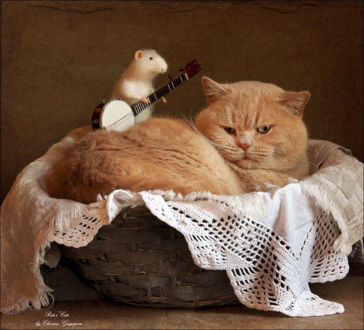 идею баю бай картинки животные маленьким угловым диванчиком