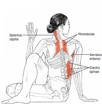 I would like to know much more about the neck.. In my Iyengar Class we did NOT look over the right but the left shoulder..