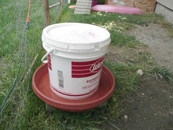 A different style of homemade chicken waterer, using a top opening bucket that has a rubber gasket seal in the lid. Also instructions for making a similar self-feeder.