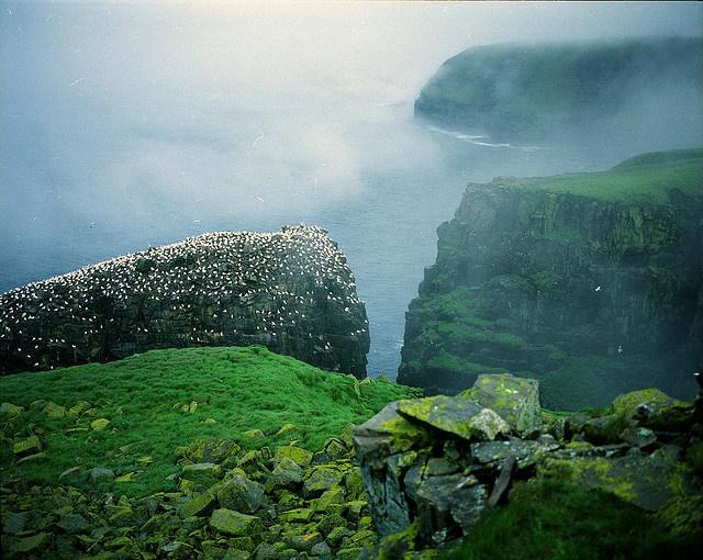 Newfoundland (pronounced like understand its newfoundland)