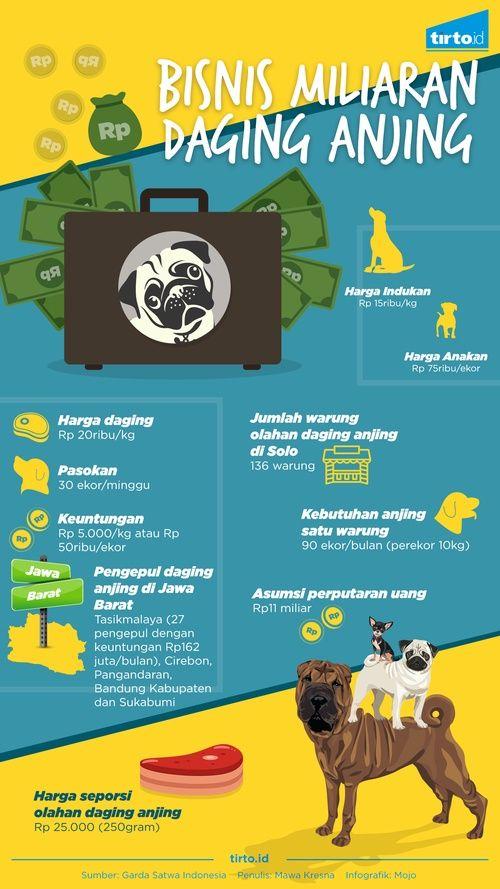 Setiap bulan, belasan ribu anjing dibunuh dengan alasan mencegah rabies atau…
