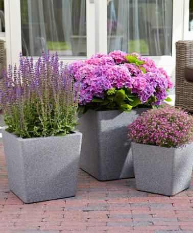 iQbana® Conical grijs, set x 3  Prachtige set van 3 super lichtgewicht plantenbakken!    #Bakker #tuin #bloempotten    http://www.bakker-hillegom.nl/product/iqbana-conical-grijs-set-x-3/