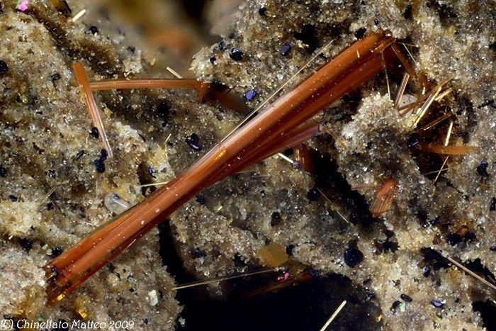 Magnesio-hornblende - Nickenicher Sattel, Nickenich, Andernach, Eifel, Rhineland-Palatinate, Germany Size: 3.16 mm