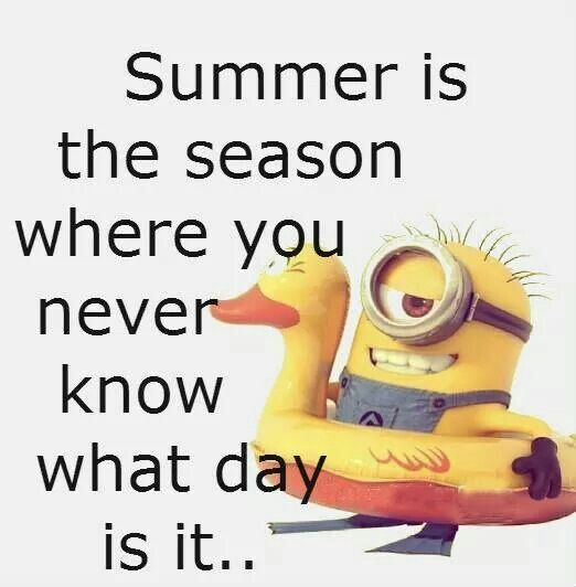 Funny Summertime Quotes: 77 Best Images About Beach Humor And Fun On Pinterest