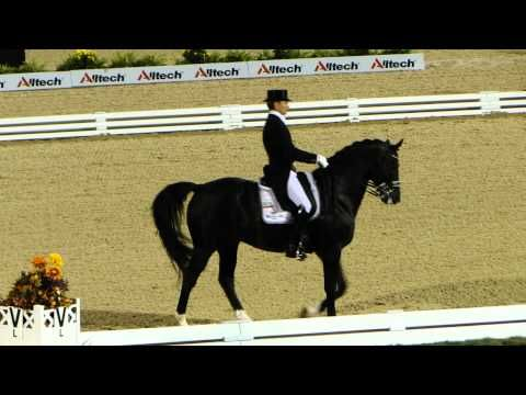Moorlands Totilas Freestyle Dressage World Equestrian Games 2010
