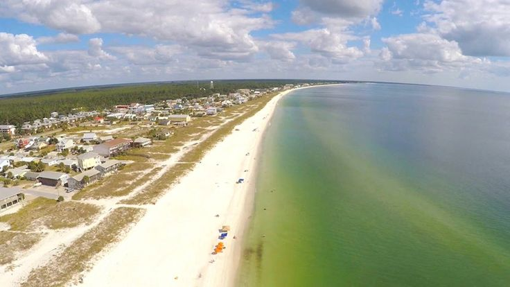 Dog Friendly Beaches In Sebastian Florida