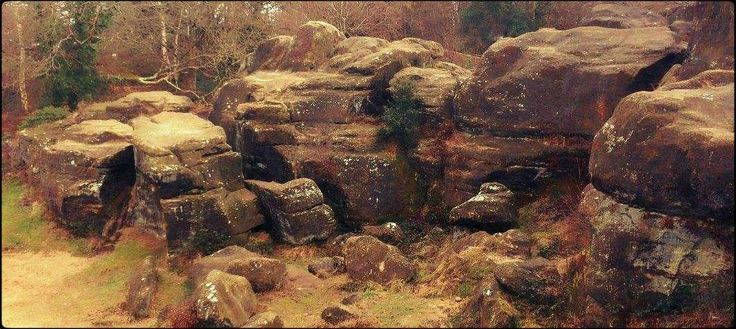 A view from the Toad Rock, Rusthall (no date).