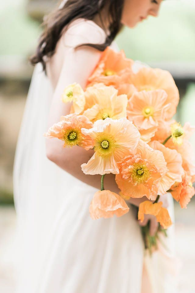 316 best f l o w e r s t o h o l d images on pinterest flower arrangements floral. Black Bedroom Furniture Sets. Home Design Ideas