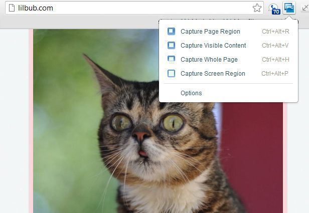 Screenshots will only render what's visible on your monitor. If you want to grab an entire web page, this handy extension couldn't be simpler to use.