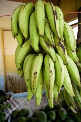 African-style boiled plantains – boil with the peels on (chopped into halves or thirds), then peel after cooking.