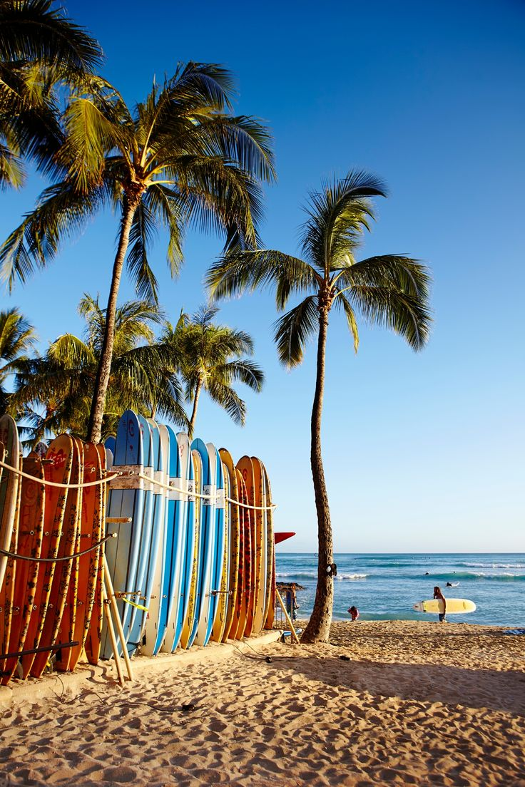 Not one for lying around? Surf's up in Hawaii!