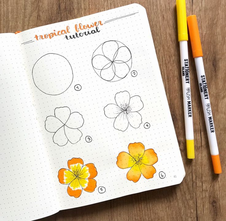 pinsarah willey on doodles  flower drawing tutorials
