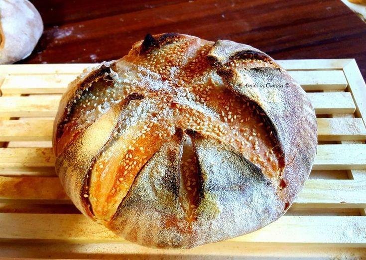 Pane con la camicia – Laura V.