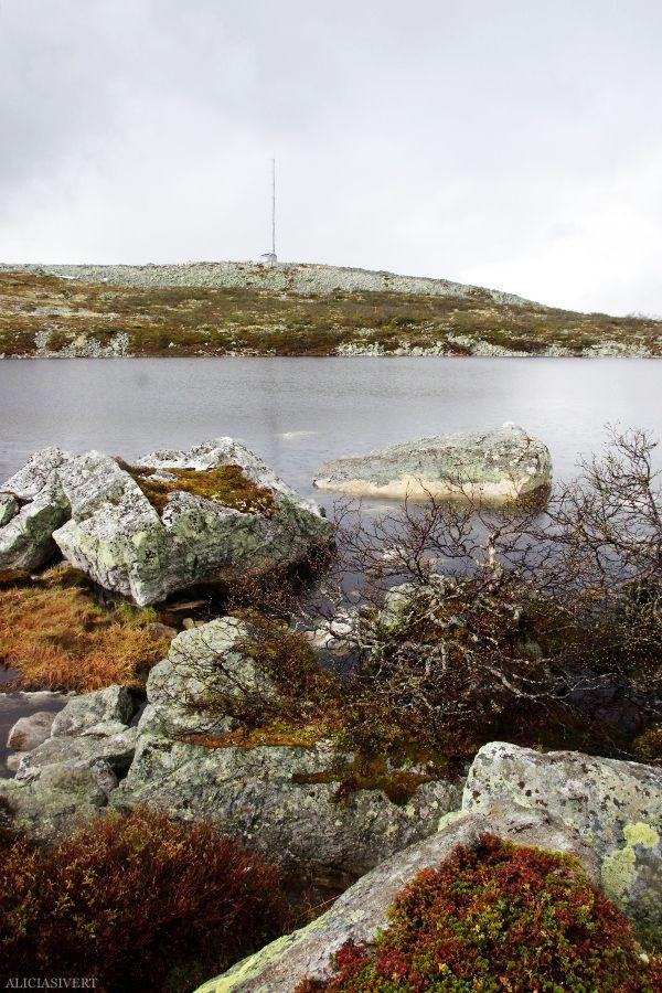 Varggranshågna, Härjedalen, Sweden. Photo by Alicia Sivertsson, 2015.