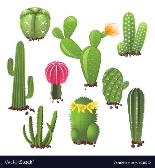 Pin On Garden Flower Design