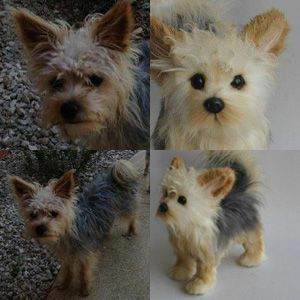 silky dog white. custom stuffed animals made to look just like your pet! they\u0027re called cuddle clones : ) this is maximus the silky terrier and his clone dog white i