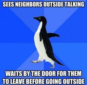 Socially Awkward Penguin Meme – See neighbors