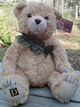 6 foot teddy bear for valentines day