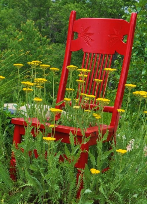 53 Cool Backyard Pond Design Ideas: 53 Best Really Cool Herb Garden Ideas Images On Pinterest