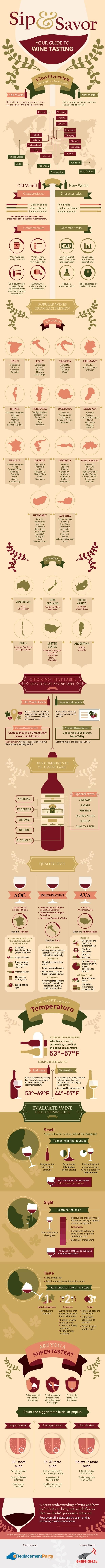 Channel Your Inner Sommelier With This Crash Course in Wine   Mental Floss