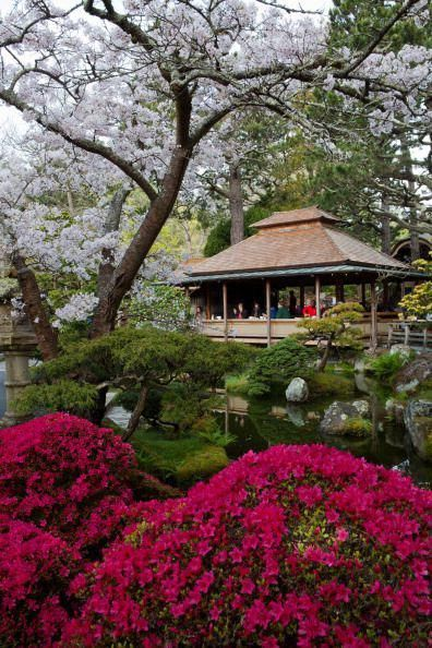 25 Beautiful Japanese Gardens - Pictures of Japanese Garden Design