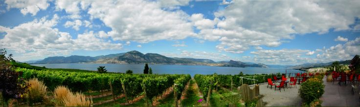 Panoramic View from the Winery!