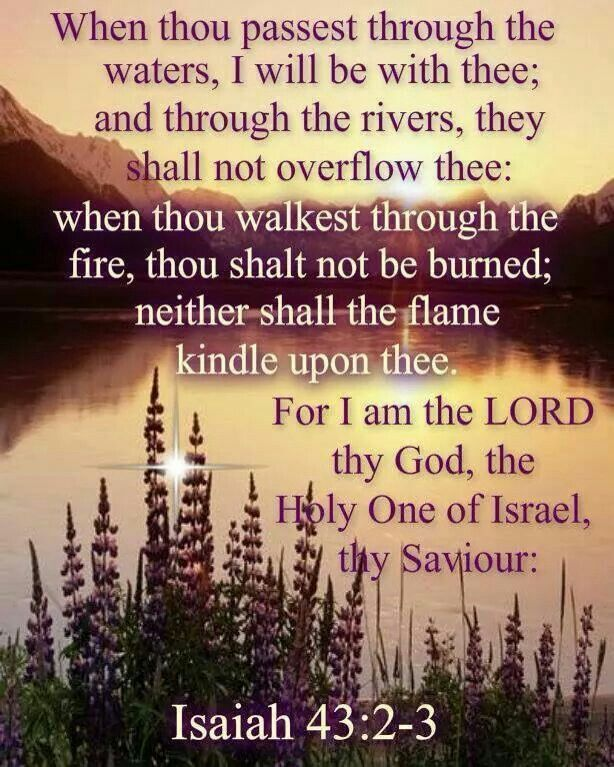 "Isaiah 43:2-3,5 ""When thou passest through the waters, I will be with thee; and through the rivers, they shall not overflow thee: when thou walkest through the fire, thou shalt not be burned; neither shall the flame kindle upon thee. For I am the Lord thy God, the Holy One of Israel, thy Saviour: I gave Egypt for thy ransom, Ethiopia and Seba for thee.Fear not: for I am with thee: I will bring thy seed from the east, and gather thee from the west;"