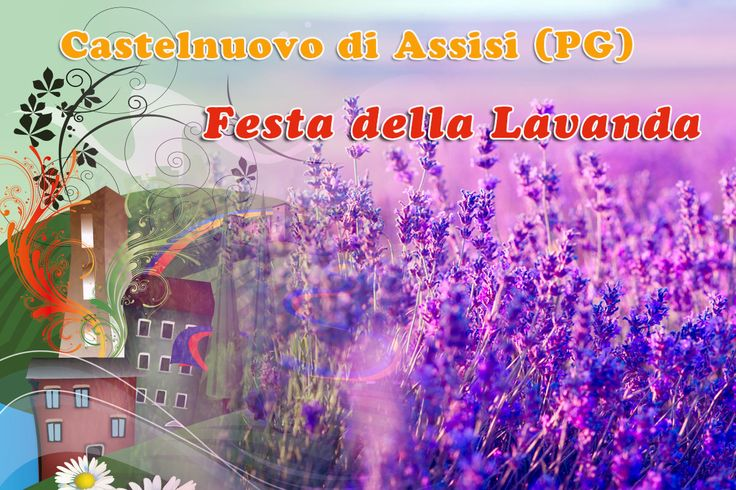 Data: 1il 18/19 il 25/26 giugno e il 2/3 luglio 2016 Descrizione Ognianno ad Assisi dal 2010 si svolge LA FESTA DELLA LAVANDA. La festa