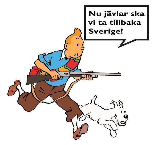 """""""Nu jävlar ska vi ta tillbaka Sverige!"""""""