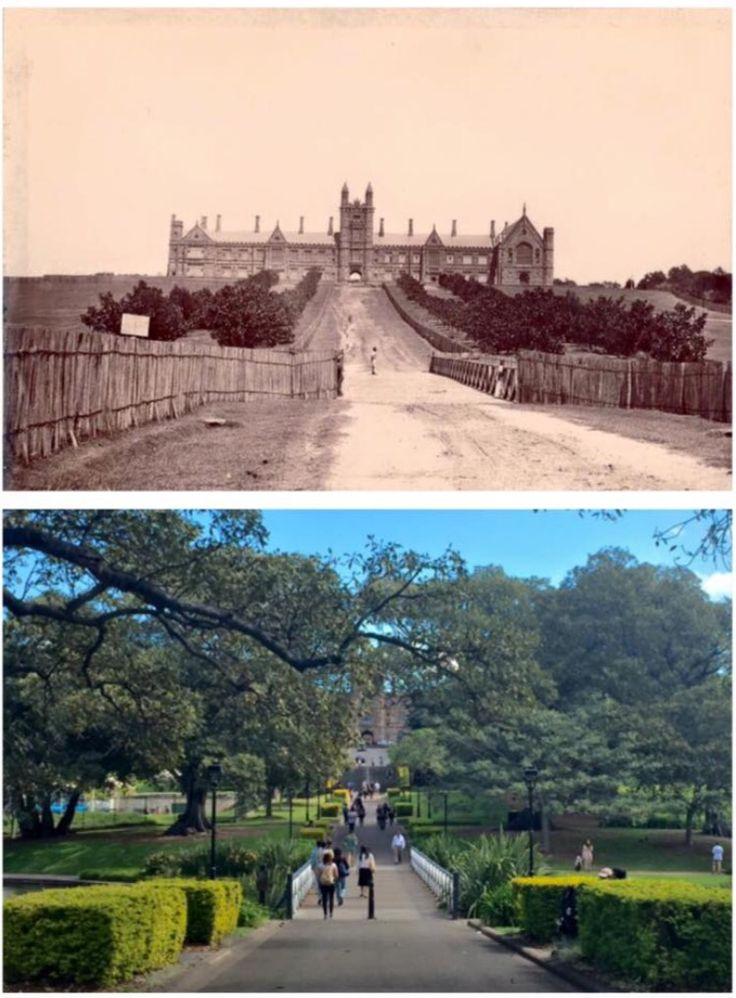 Sydney University seen from Victoria Park in 1870 > Sydney University barely…