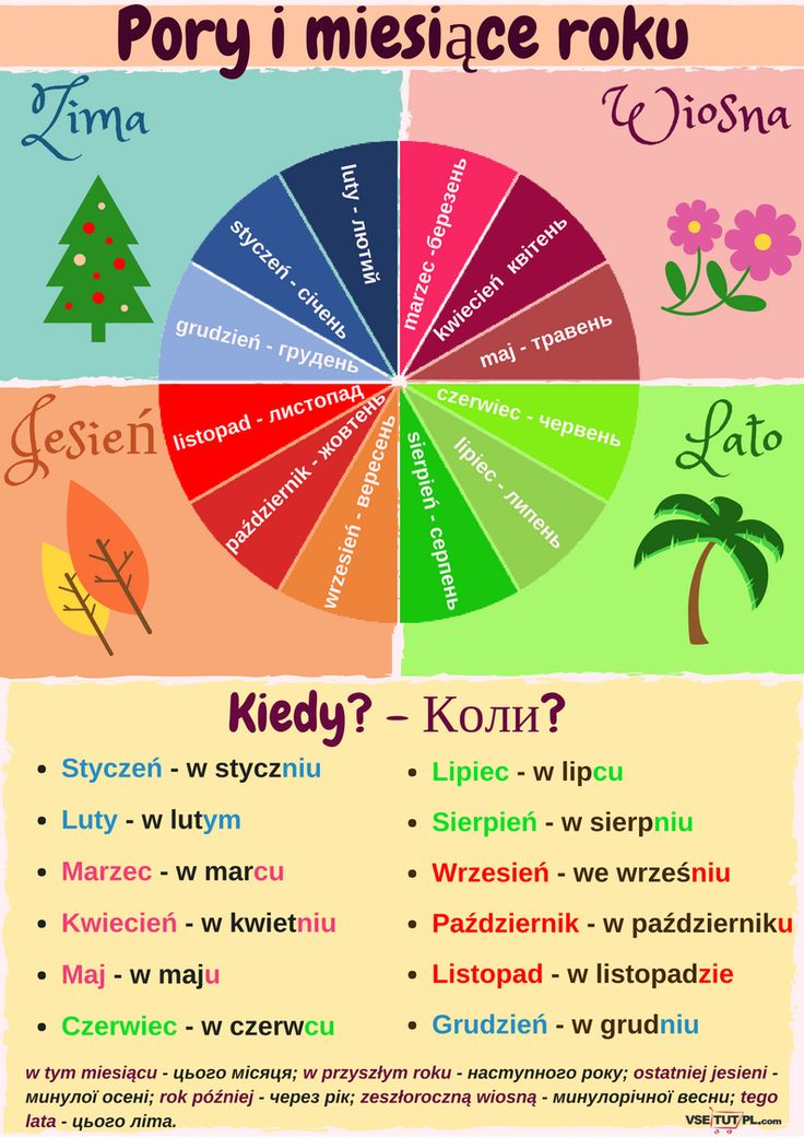 #polish #foreign_language #polish_language #infographics  #vsetutpl   БЕЗКОШТОВНІ уроки польської мови ОНЛАЙН на сайті http://vsetutpl.com/