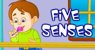 This video will introduce kids to the five senses, we have. Through the video, kids can learn how our eyes, nose, ears, tongue and skin help us explore the world