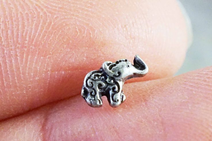 "Nose ring, elephant nose stud. Tiny elephant nose ring to decorate your nose piecing! Elephant is 7mmx5mm and 316L surgical steel 316L surgical steel nose ring post is 1/4"" or 6mm All orders arrive in"