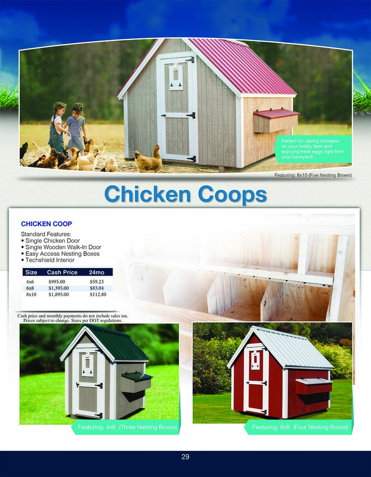Sheds Direct's Chicken Coops are great quality crafted. www.shedsdirectinc.com