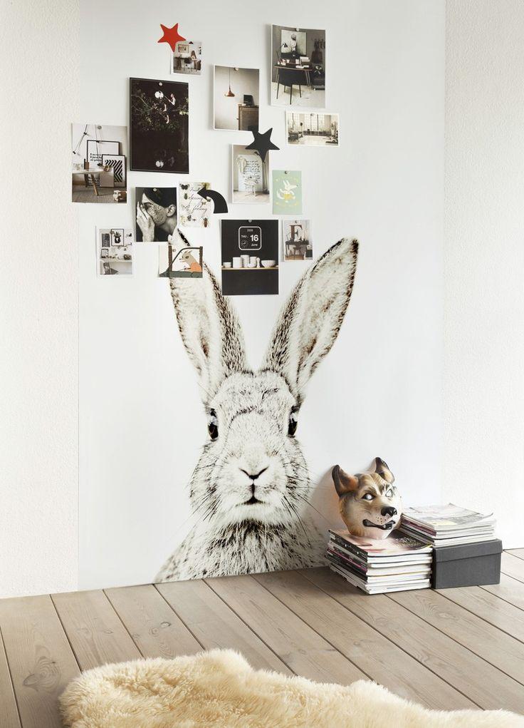 wall mural | rabbit | kids space