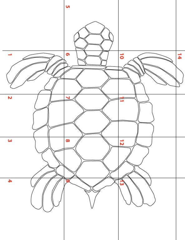 Large Sea Turtle Template For Applique Names Turtles